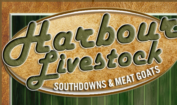 Harbour Livestock | About Us